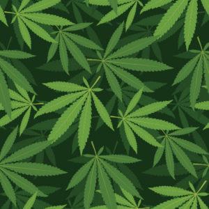 Illustrated green marijuana leaves